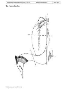 Spielend richtig sprechen lernen: die Laute /ç/ und /x/ Übung 44 - Der Haubentaucher_01